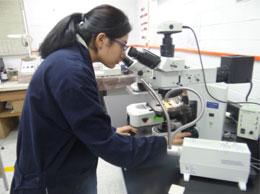 La ESIT motiva a los egresados a integrarse a proyectos de investigación en áreas de nanotecnología, sustentabilidad, textiles técnicos, prendas inteligentes e ingeniería industrial aplicada a textiles.